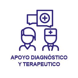 Apoyo Diagnóstico y Terapéutico